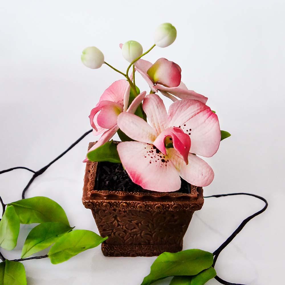 Букет орхидей в квадратной вазе